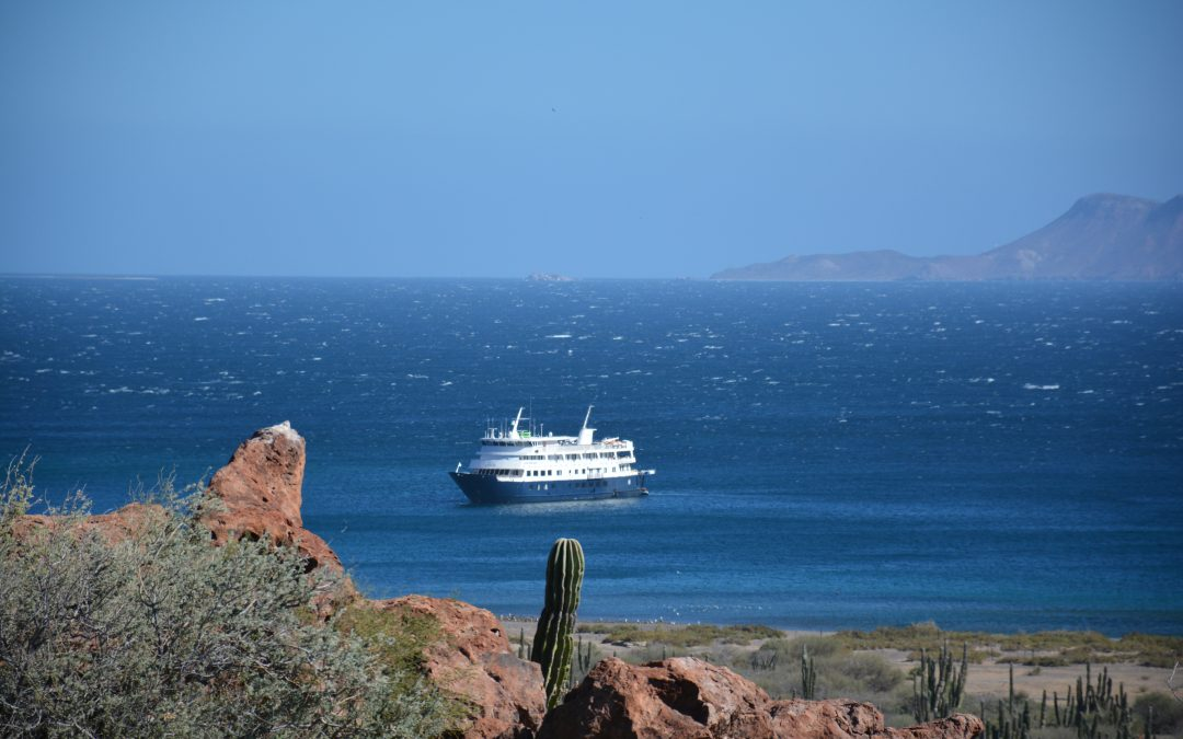 Exploring Baja California Sur with UnCruise Adventures