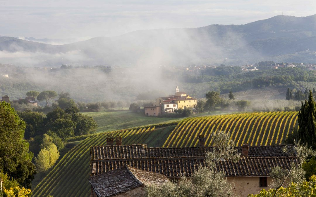 Culinary Adventures through the Vineyards of Italy's Picturesque Countyside