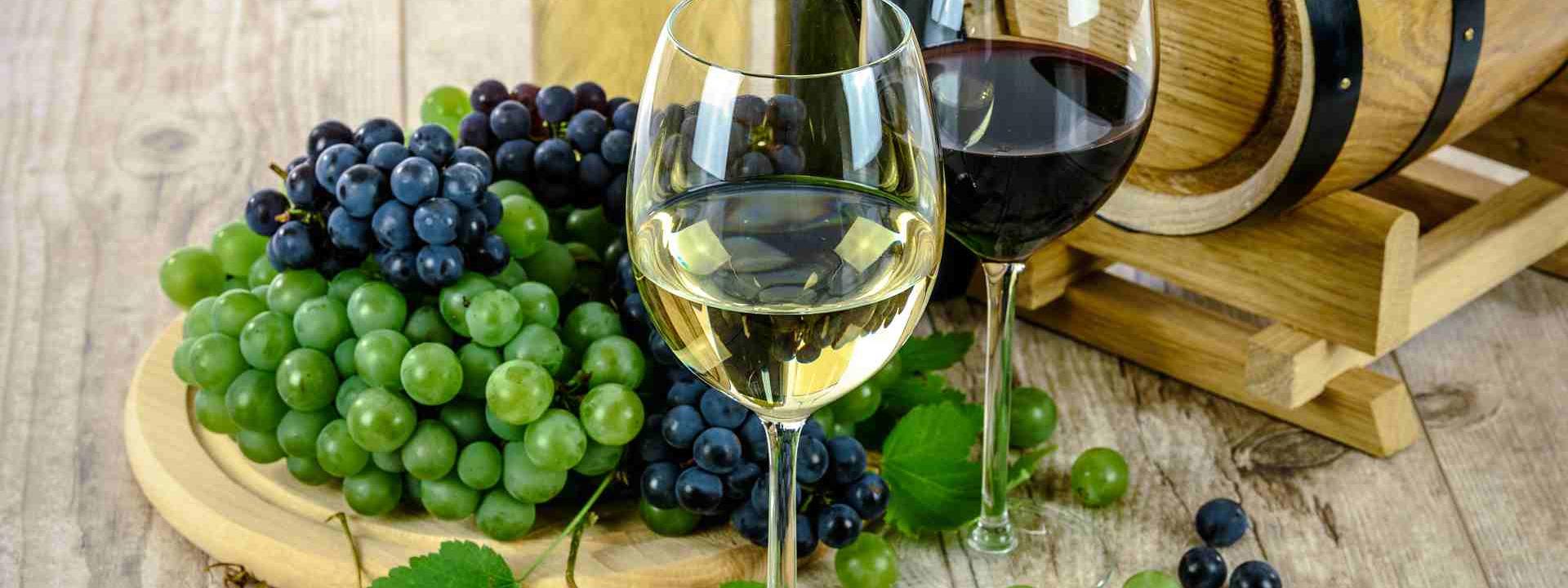 Top Wine Regions