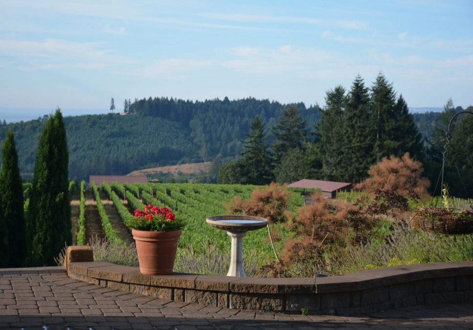Willamette Valley – The Majestic Oregon Wine Trail
