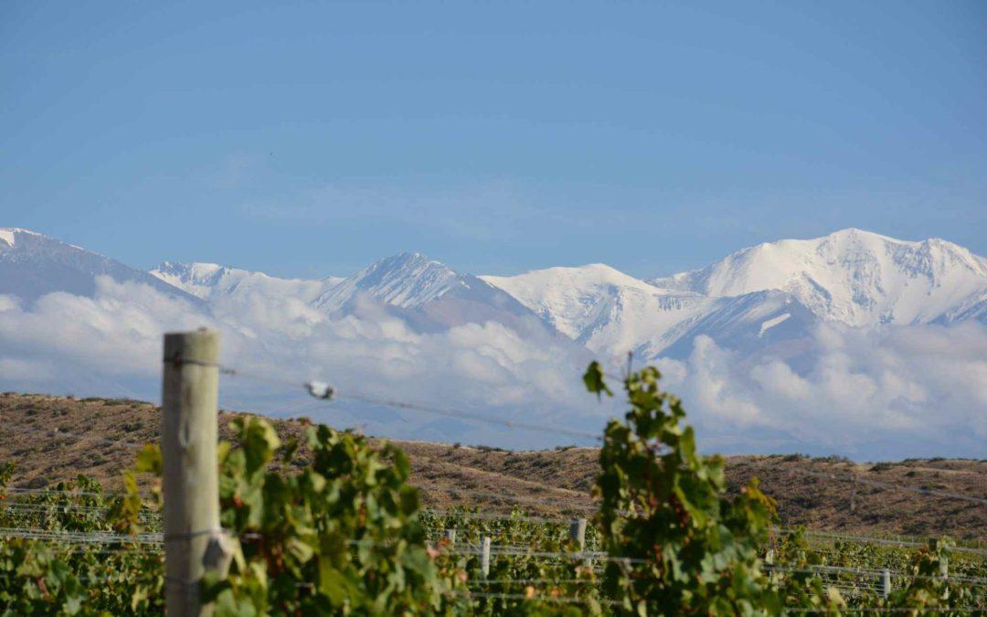 Marvelous Mendoza Malbecs – Visit Mendoza Argentina
