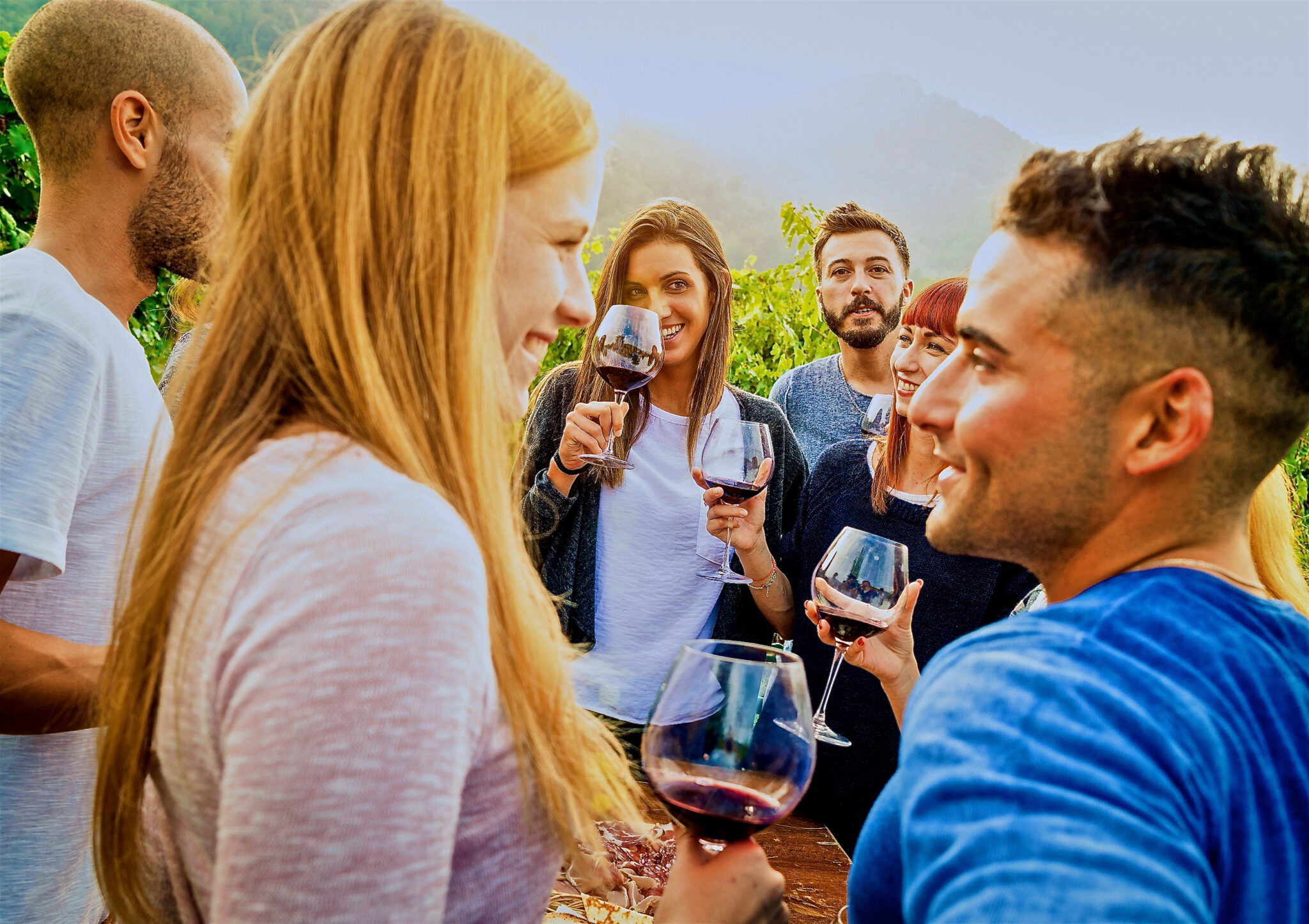 What's New In Sonoma Valley This Summer
